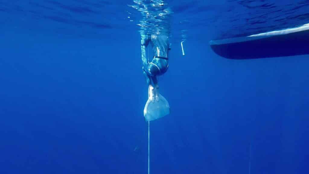 , Year 2020 – Freediving & Life